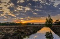 Ruud van der Aalst Landschap